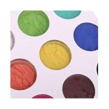 Pigment Unghii Perlat 12buc G505