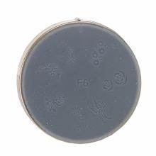 Matrita Silicon Pentru Stampila Unghie Aurie F6