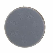 Matrita Silicon Pentru Stampila Unghie Aurie F3